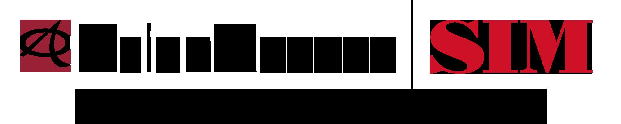A2-SIM-2000x400-TAG